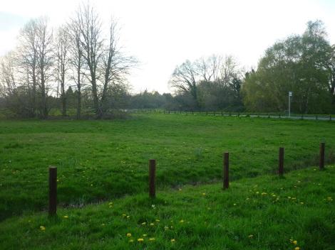 Bramley Green